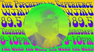 thepsychedelicexperience3