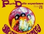 The Psychedelic Experience – September 18, 2014 – Are You Experienced?