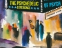 The Psychedelic Experience – February 5, 2015 – The Soul of Psych
